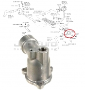 Thermostat Housing Inlet Water