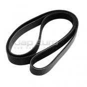 Alternator Fan Belt